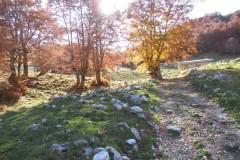 Monte Morrone Ris.Nat.Montagne della Duchessa