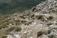 Monte Velino Sent. 5